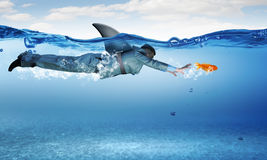 Requin de monde d'affaires Photographie stock