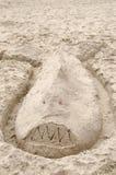 Requin de sable sur la plage image stock