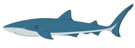 Requin de vecteur illustration stock