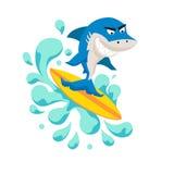Requin frais de surfer Photos stock