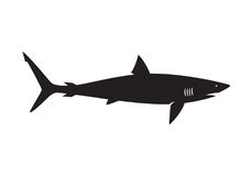 Requin graphique, vecteur illustration stock