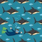 Requins et plongeur autonome Configuration sans joint Image libre de droits