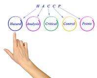 Requisiti normativi di HACCP Fotografia Stock