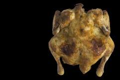 Res muerta cocida del pollo en fondo negro Foto de archivo libre de regalías