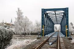 Resa med tåg bron i Litovel bland de frost glaserade träden i kall vinterdag Fotografering för Bildbyråer