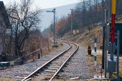 Järnväg med matande sheeps royaltyfri foto
