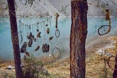 Resa på fötter till och med bergdalarna Skönheten av djurliv Altai vägen till Shavlinsky sjöar vandring Royaltyfri Bild