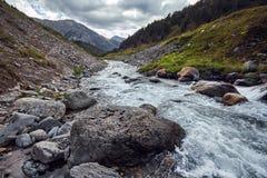 Resa på fötter till och med bergdalarna Skönheten av djurliv Altai vägen till Shavlinsky sjöar vandring Arkivfoto