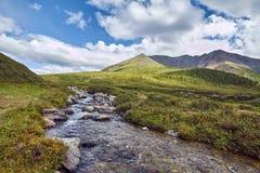 Resa på fötter till och med bergdalarna Skönheten av djurliv Altai vägen till Shavlinsky sjöar vandring Royaltyfria Bilder