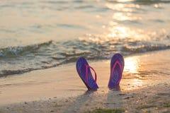 Resa resväskan med seascapeinsida Färgrika flipmisslyckanden på den sandiga stranden under solnedgång Fotografering för Bildbyråer