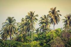 Resa semesterbakgrund - den tropiska ön med semesterorter - phien Fotografering för Bildbyråer