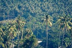 Resa semesterbakgrund - den tropiska ön med semesterorter - phien Royaltyfri Bild