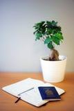 Resa tidskriften och passet på ett skrivbord, bredvid lite växten Fotografering för Bildbyråer