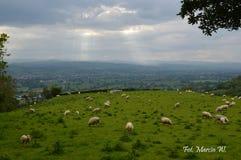 Resa till och med Wales med kameran royaltyfri fotografi