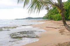 Resaca asombrosa de la playa de Costa Rica Ocean Water Beach Paradise de las vacaciones de los árboles de la lluvia del agua del  imagenes de archivo