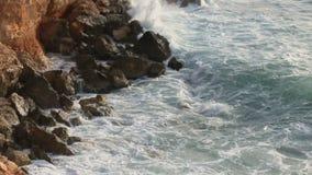Resaca del mar en el Chipre Rocky empedró la playa Árbol en campo Paraíso asoleado almacen de video