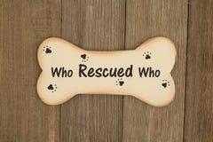 Rescate de un mensaje del perro en el hueso de perro de madera Imagen de archivo