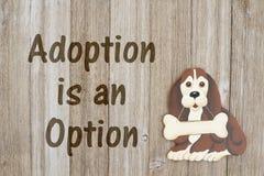 Rescate de un perro con la adopción Imágenes de archivo libres de regalías