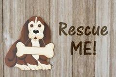 Rescate de un perro en la madera resistida Fotos de archivo