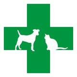Rescate del animal doméstico Imagen de archivo libre de regalías