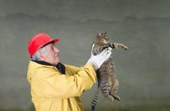 Rescate del gato Fotos de archivo