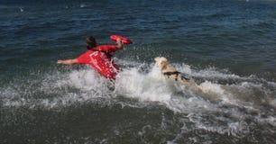Rescate en el mar con los perros Foto de archivo