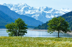 Reschensee summer landscape (Austria). Reschensee ( or Lake Reschen) summer landscape with  blossoming meadow (Italy Stock Photography