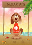 Rescue dog on the beach Royalty Free Stock Images
