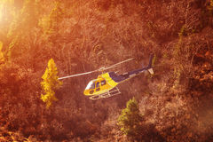 Rescue helicopter over the trees in the mountains. Sunny day royalty free stock photography