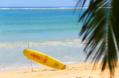 Rescue lifeguard icon on green Ocean beach on sunshine Royalty Free Stock Images