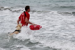 Rescue at sea with dogs royalty free stock photos