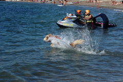 Rescue at sea with dogs royalty free stock photography