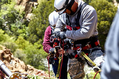 Rescue Workers practicing a Rescue Drill on Ledge of Mountain Royalty Free Stock Images