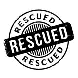 Rescued rubber stamp Stock Photos