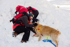 Rescuer and his service dog. At Mountain Rescue Service at Bulgarian Red Cross is rescuing a buried by an avalanche tourist  in a training course, Vitosha Stock Photo