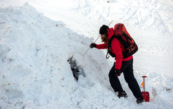 Rescuer and his service dog. At Mountain Rescue Service at Bulgarian Red Cross is rescuing a buried by an avalanche tourist  in a training course, Vitosha Stock Photography