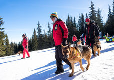 Rescuer and his service dog Stock Images