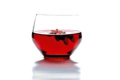 Rese no vinho Fotografia de Stock Royalty Free