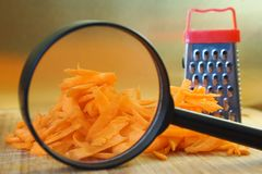 Research and analysis of food quality. Search for features of grated carrots using a magnifying glass. Genetic Engineering. Conducting experiments royalty free stock photography