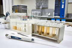 Research of biological material in biochemical laboratory. Research of biological material in the biochemical laboratory Royalty Free Stock Image