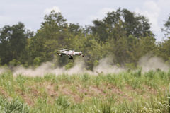 Research drone flying over sugarcane field Stock Photography