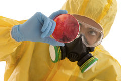 Research laboratory technician looking at petri dish box Royalty Free Stock Photo