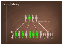 Research Process Sampling from A Target Population Royalty Free Stock Images