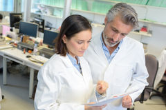Research professionals reading report. Research professionals reading a report stock image