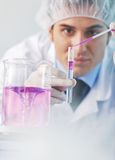 Research and  science people  in labaratory Stock Photos