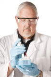 Research scientist. With blood samples for analysis stock images