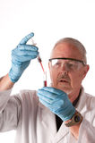 Research scientist placing blood. Sample in a test-tube for analysis royalty free stock images