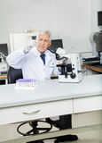 Researcher Analyzing Microscope Slide In Lab. Senior male researcher analyzing microscope slide in medical lab Royalty Free Stock Photography