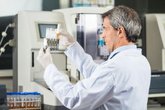 Researcher Analyzing Urine Samples In Lab. Confident male researcher analyzing urine samples in lab Stock Photography