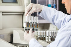 Researcher Analyzing Urine Samples In Lab Stock Image